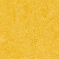 MARMOLEUM CLICK 333251 Lemon Zeet, 30x30cm, tl. 9,8mm (0,63 m2)